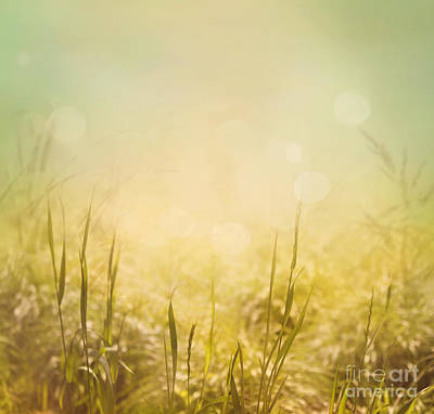 Spring Background Poster by Mythja  Photography