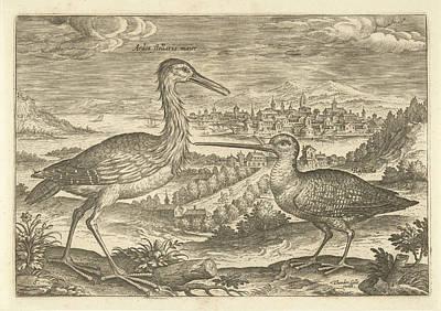 Two Birds In A Landscape, Adriaen Collaert Poster