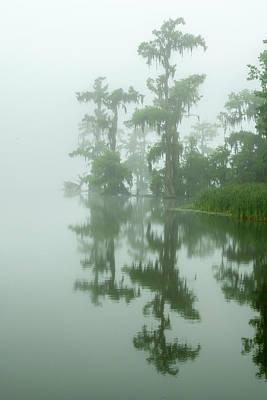 Usa, Louisiana, Lake Martin Poster