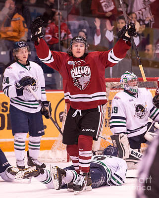 Guelph Storm Poster