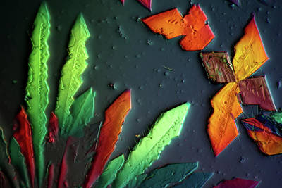 Cupric Acetate Crystals Poster by Marek Mis