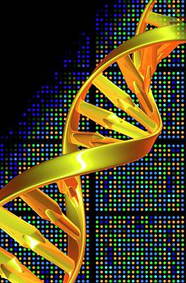 Dna Microarray And Double Helix Poster