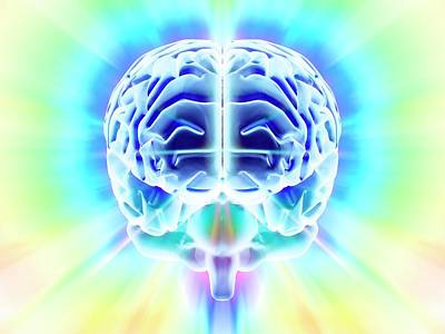 Human Brain Poster by Pasieka