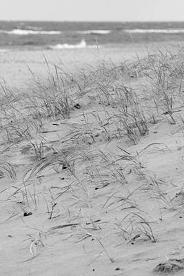 Michigan Beach Poster by Gary Marx