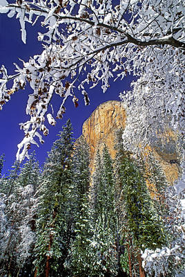 Usa, California, Yosemite National Park Poster