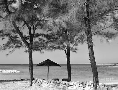A Bahamas Scene In Black And White Poster