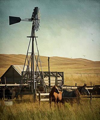 A Beautiful Nebraska Sandhills Farm Poster by Priscilla Burgers