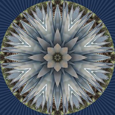 Poster featuring the digital art A Blue Agave by Trina Stephenson