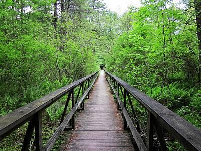 A Bridge To Somewhere Poster