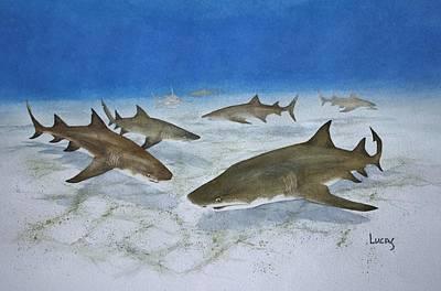 A Bushel Of Lemon Sharks Poster