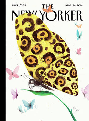 A Butterfly With A Cheetah Pattern Rests Poster by Ana Juan