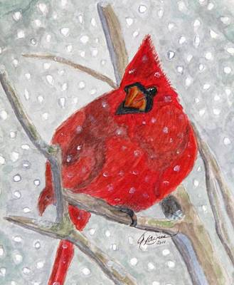 A Cardinal Winter Poster by Angela Davies