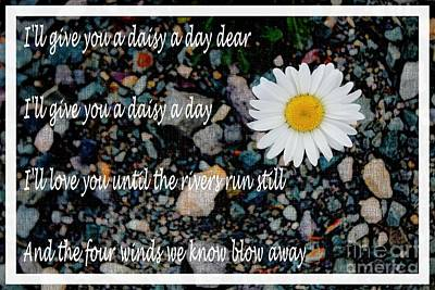 A Daisy A Day Poster by Barbara Griffin