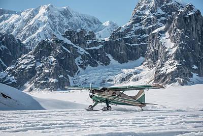 A Dehavilland Beaver Ski Plane Lands Poster
