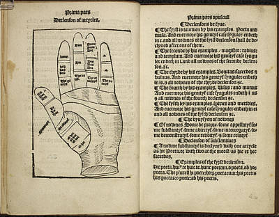 A Diagram Of A Hand Poster