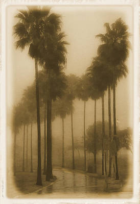 Poster featuring the photograph A Foggy Day by Joseph Hollingsworth