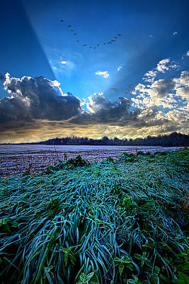 A Frosty Morning Poster by Phil Koch