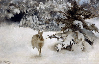 A Hare In The Snow Poster by Bruno Andreas Liljefors