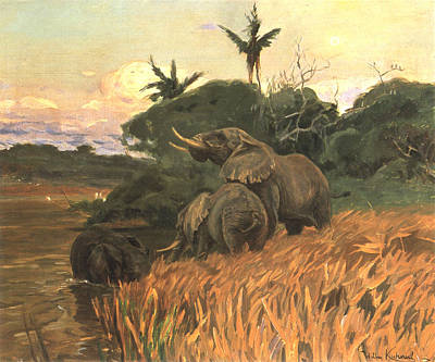A Herd Of Elephants By Moonlight Poster