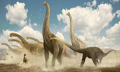 A Herd Of Sauropods Migrating Together Poster by Jan Sovak