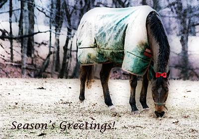 Poster featuring the photograph A Horse's Season's Greeting Card by Polly Peacock