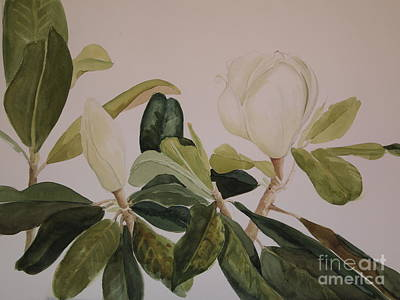 Poster featuring the painting A Magnolia Duet by Nancy Kane Chapman
