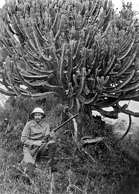 A Man In Africa Holding A Rifle N Front Of A Large Rubber Tree. Poster