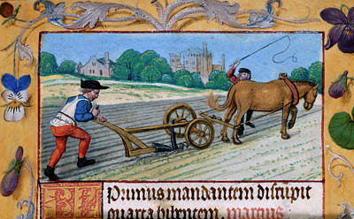 A Man With A Horsedrawn Plough Poster by British Library