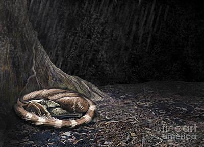 A Mei Long Curls Up Beside The Roots Poster by Roman Garcia Mora