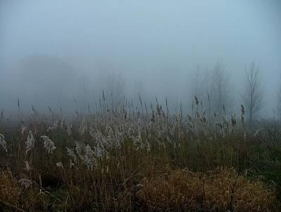 A Morning Fog Poster