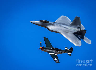 A Mustang And A Raptor Poster by Webb Canepa