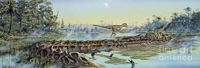 A Pair Of Allosaurus Dinosaurs Explore Poster by Mark Hallett