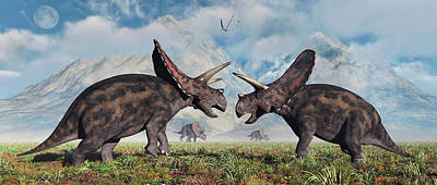 A Pair Of Torosaurus Dinosaurs Involved Poster by Mark Stevenson