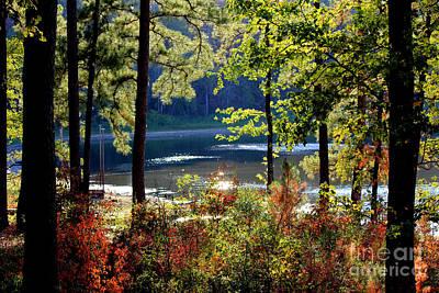 A Peek At Lake O The Pines Poster by Kathy  White