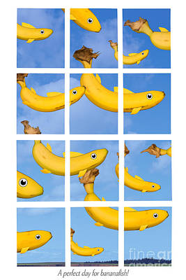 A Perfect Day For Bananafish Poster by Lionel F Stevenson
