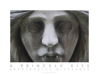 Poster featuring the digital art A Princely Kiss Unnaturally Disturbed Poster by David Davies