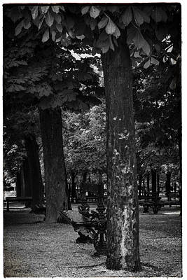 A Quiet Spot - Bench And Trees In Paris Poster by Georgia Fowler