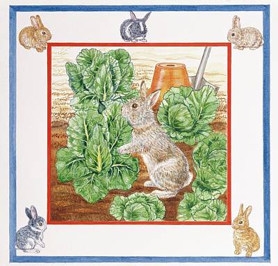 A Rabbit In The Cabbage Patch Wc On Paper Poster by Catherine Bradbury