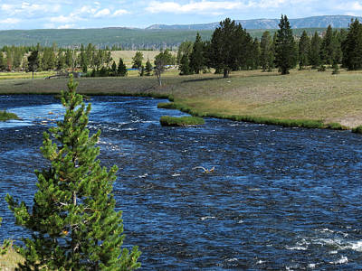 Poster featuring the photograph A River Runs Through Yellowstone by Laurel Powell