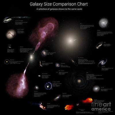 A Selection Of Galaxies Shown Poster by Rhys Taylor