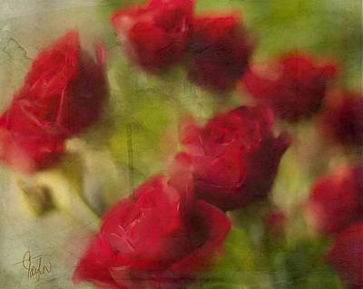 A Shower Of Roses Poster by Colleen Taylor