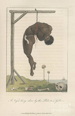 A Slave Hung From A Gallows Poster by British Library