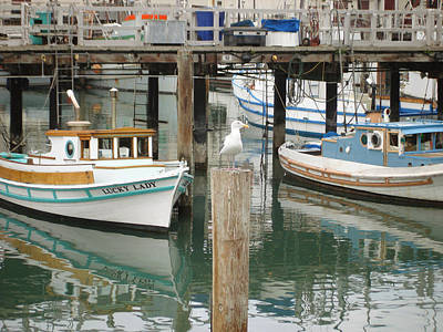 Poster featuring the photograph A Small Harbor by Hiroko Sakai