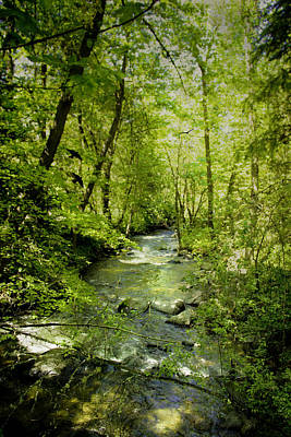 A Spring Day At Lithia Creek Poster by Diane Schuster