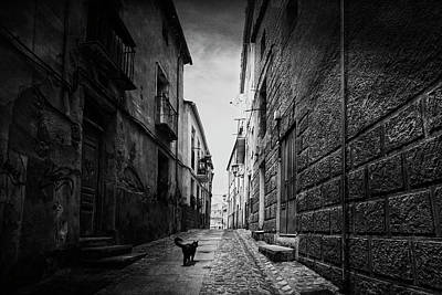 A Street In The Old Zamora Poster