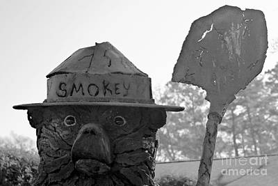 A Surprised Smokey Poster by Gary Richards