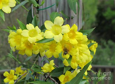 A Taste Of Yellow Poster by Arlene Carmel