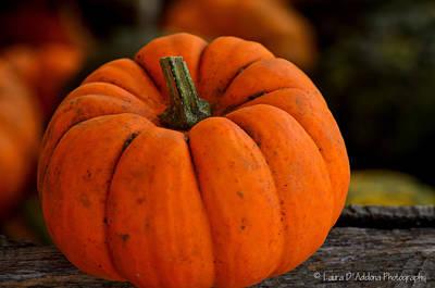 A Thanksgiving Pumpkin Poster