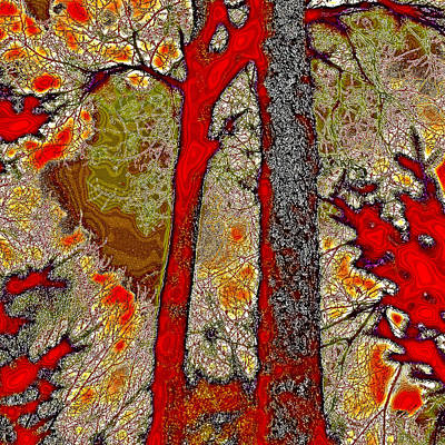 A Touch Of Autumn Abstract V Poster by David Patterson