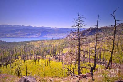 A View From Okanagan Mountain Poster